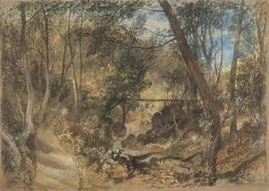 Turner - The Woodwalk, Farnley Hall, c.1818