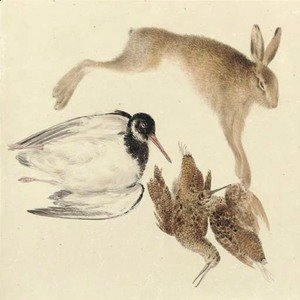 Turner - Study of dead game woodcock, oyster catcher and hare